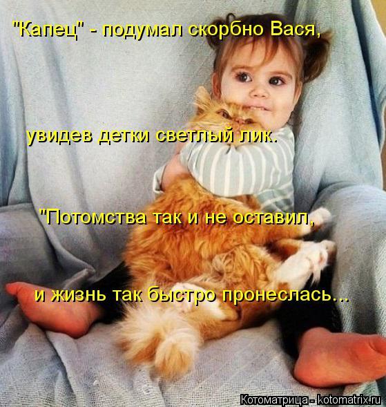 """Котоматрица: """"Капец"""" - подумал скорбно Вася,  увидев детки светлый лик. """"Потомства так и не оставил,  и жизнь так быстро пронеслась..."""