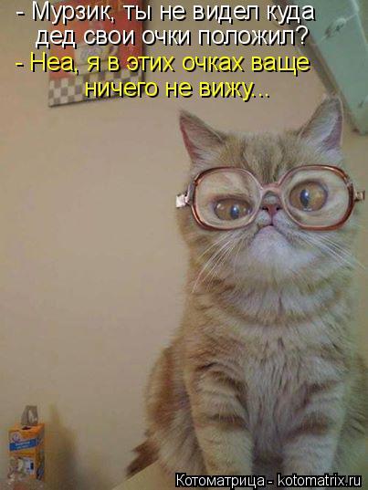 Котоматрица: - Мурзик, ты не видел куда дед свои очки положил? - Неа, я в этих очках ваще ничего не вижу...