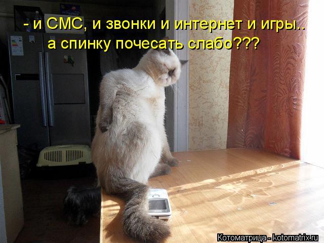 Котоматрица: - и СМС, и звонки и интернет и игры.. а спинку почесать слабо???