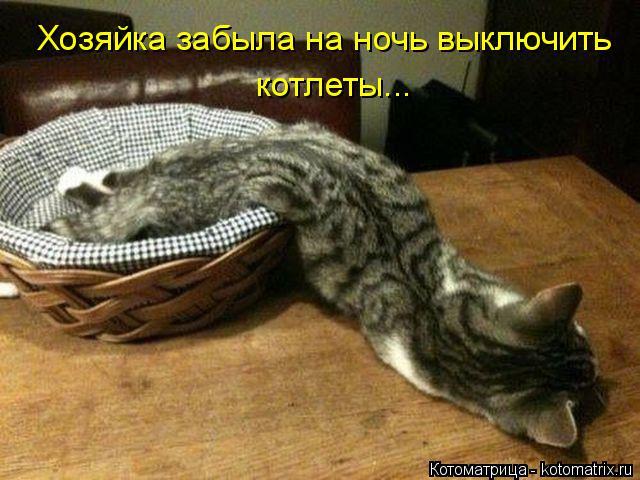 Котоматрица: Хозяйка забыла на ночь выключить котлеты...