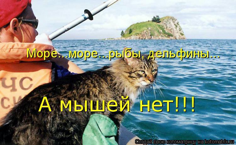 Котоматрица: Море...море...рыбы, дельфины... А мышей нет!!!