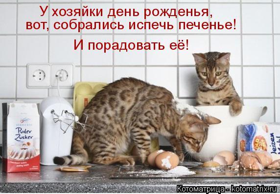 Котоматрица: У хозяйки день рожденья,  вот, собрались испечь печенье! И порадовать её!