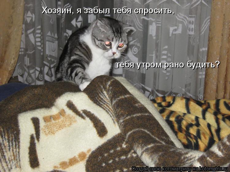 Котоматрица: Хозяин, я забыл тебя спросить,  тебя утром рано будить?