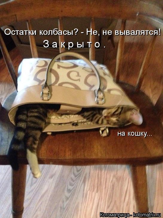 Котоматрица: Остатки колбасы? - Не, не вывалятся! З а к р ы т о . на кошку...