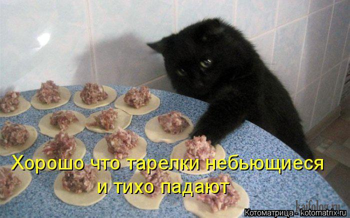 Котоматрица: Хорошо что тарелки небьющиеся и тихо падают