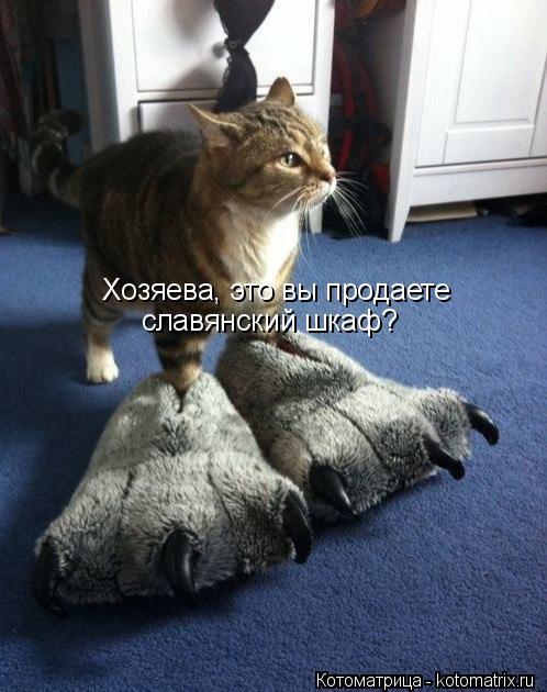 Котоматрица: Хозяева, это вы продаете славянский шкаф?