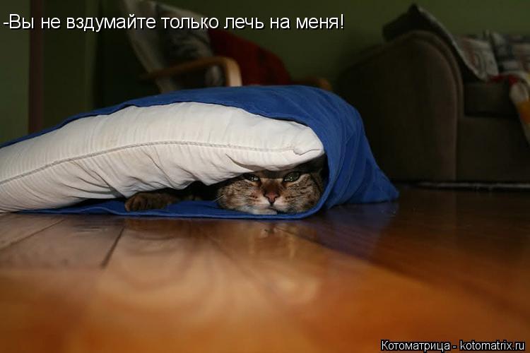 Котоматрица: -Вы не вздумайте только лечь на меня!