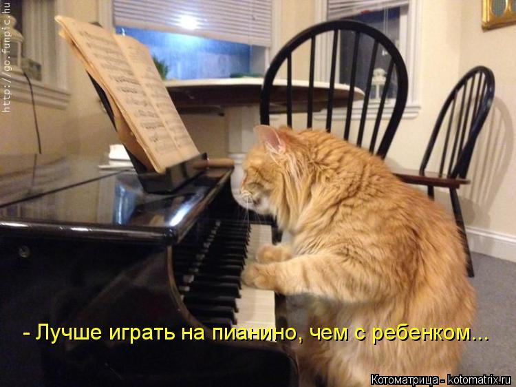 Котоматрица: - Лучше играть на пианино, чем с ребенком...