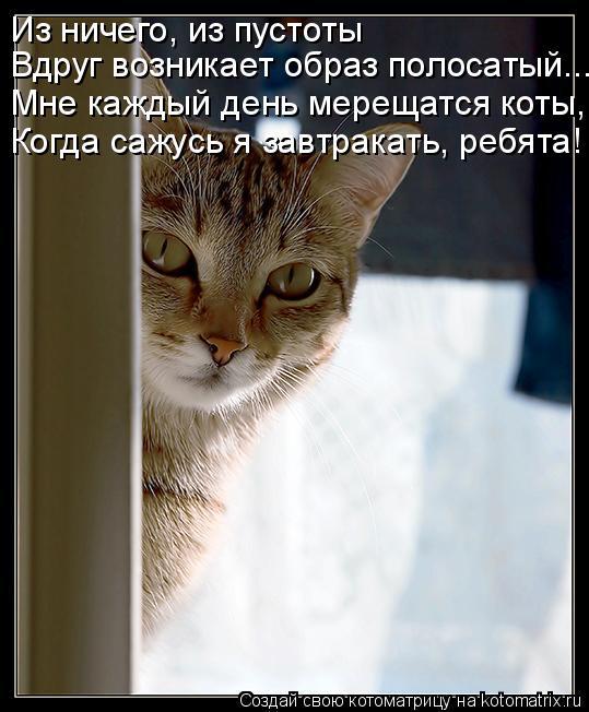 Котоматрица: Из ничего, из пустоты Вдруг возникает образ полосатый... Мне каждый день мерещатся коты, Когда сажусь я завтракать, ребята!
