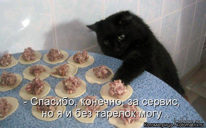 Котоматрица: - Спасибо, конечно, за сервис,  но я и без тарелок могу...