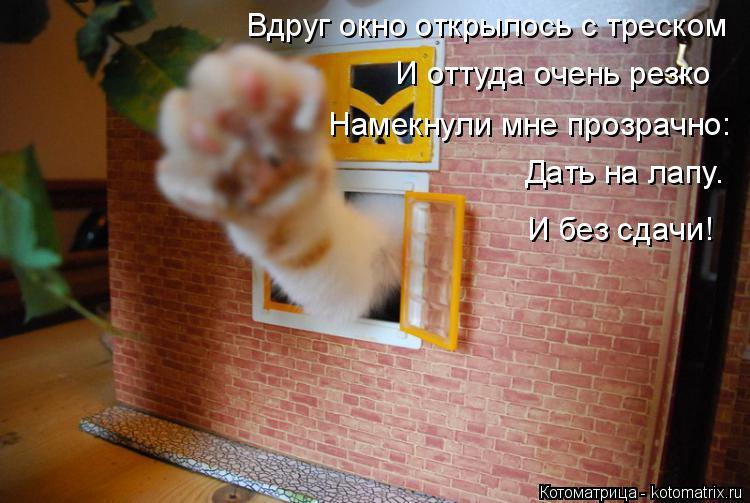 Котоматрица: Вдруг окно открылось с треском И оттуда очень резко Намекнули мне прозрачно: Дать на лапу.  И без сдачи!