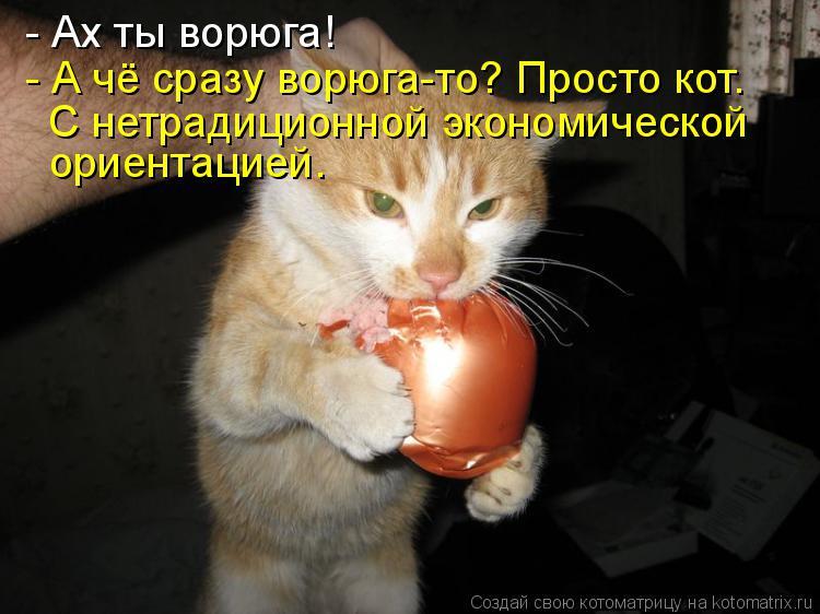 Котоматрица: - Ах ты ворюга! - А чё сразу ворюга-то? Просто кот.  С нетрадиционной экономической ориентацией.