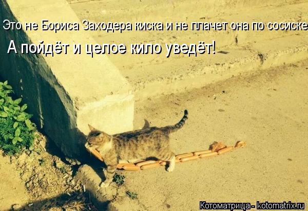 Котоматрица: Это не Бориса Заходера киска и не плачет она по сосиске. А пойдёт и целое кило уведёт!