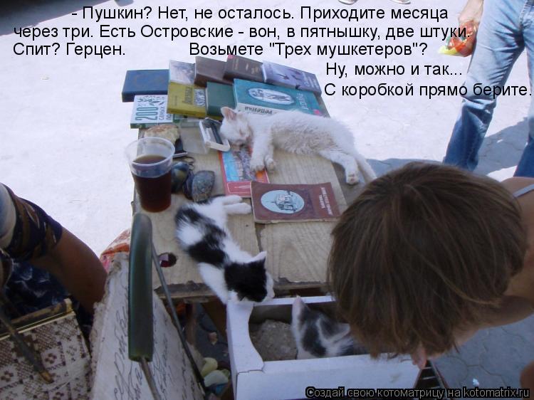 """Котоматрица: - Пушкин? Нет, не осталось. Приходите месяца  через три. Есть Островские - вон, в пятнышку, две штуки.   Спит? Герцен.             Возьмете """"Трех мушке"""