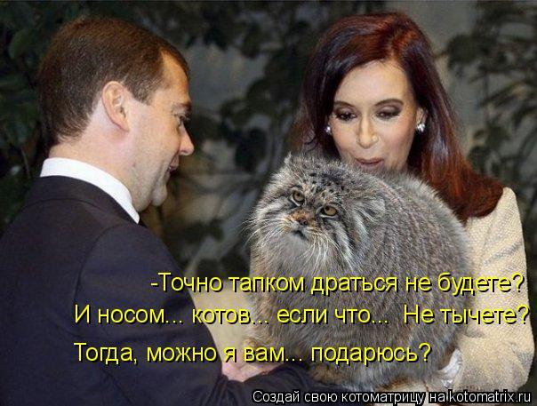 http://kotomatrix.ru/images/lolz/2014/08/30/kotomatritsa_Q7.jpg