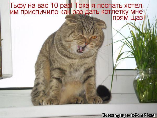 Котоматрица: Тьфу на вас 10 раз! Тока я поспать хотел,  им приспичило как раз  дать котлетку мне  прям щаз!