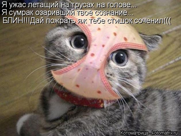 Котоматрица: Я ужас летащий на трусах на голове... Я сумрак озаривший твоё сознание... БЛИН!!!Дай пожрать яж тебе стишок соченил(((