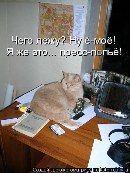 Котоматрица: Я же это... пресс-п  пьё! о Чего лежу? Ну ё-моё!