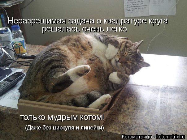 Котоматрица: решалась очень легко только мудрым котом! Неразрешимая задача о квадратуре круга (Даже без циркуля и линейки)