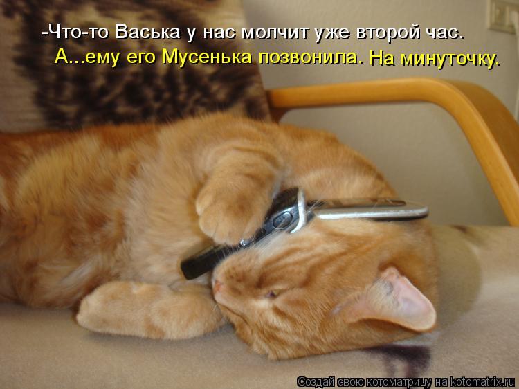 Котоматрица: -Что-то Васька у нас молчит уже второй час. А...ему его Мусенька позвонила. На минуточку.