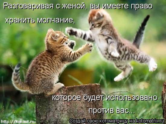Котоматрица: Разговаривая с женой, вы имеете право хранить молчание, которое будет использовано против вас...