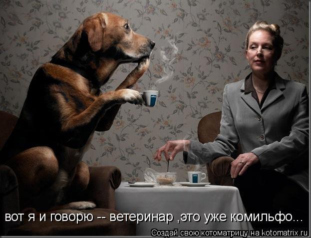 Котоматрица: вот я и говорю -- ветеринар ,это уже комильфо...