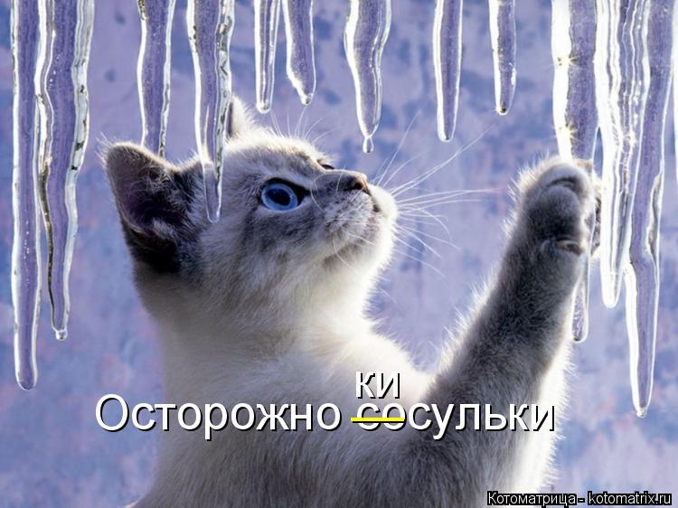 Котоматрица: Осторожно сосульки __ ки