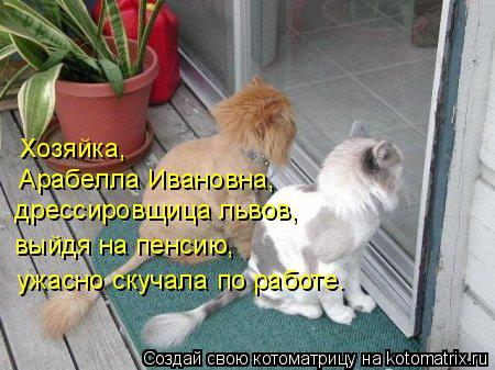 Котоматрица: дрессировщица львов, выйдя на пенсию,  ужасно скучала по работе. Арабелла Ивановна, Хозяйка,