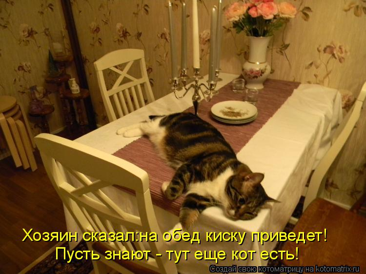 Котоматрица: Хозяин сказал:на обед киску приведет! Пусть знают - тут еще кот есть!