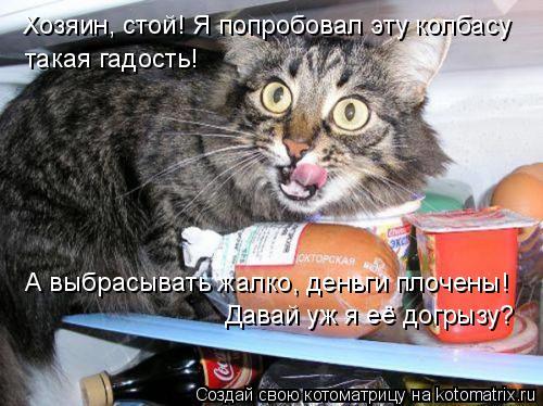 Котоматрица: Хозяин, стой! Я попробовал эту колбасу такая гадость! А выбрасывать жалко, деньги плочены! Давай уж я её догрызу?
