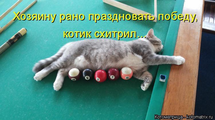 Котоматрица: Хозяину рано праздновать победу, котик схитрил...