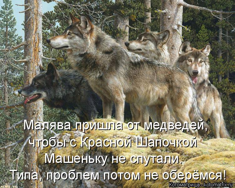Котоматрица: Малява пришла от медведей,  чтобы с Красной Шапочкой  Машеньку не спутали. Типа, проблем потом не оберёмся!