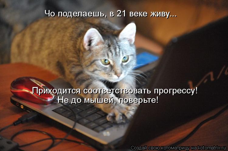 Котоматрица: Чо поделаешь, в 21 веке живу... Приходится соответствовать прогрессу! Не до мышей, поверьте!