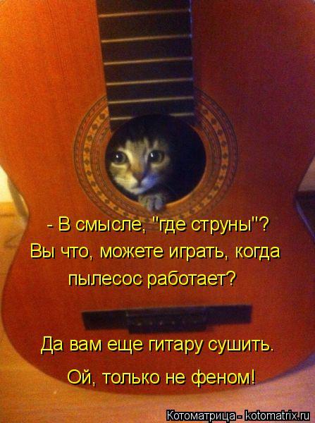"""Котоматрица: - В смысле, """"где струны""""? Вы что, можете играть, когда  пылесос работает?  Да вам еще гитару сушить. Ой, только не феном!"""