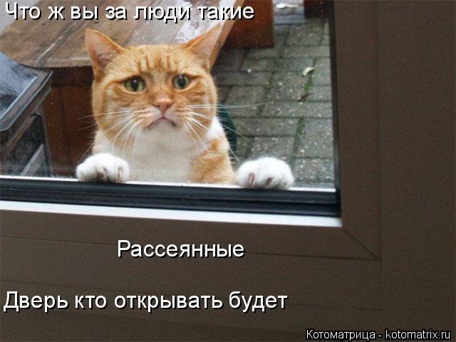 Котоматрица: Что ж вы за люди такие Рассеянные Дверь кто открывать будет