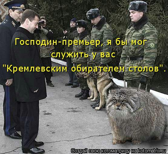 """Котоматрица: Господин-премьер, я бы мог служить у вас """"Кремлевским обирателем столов""""."""