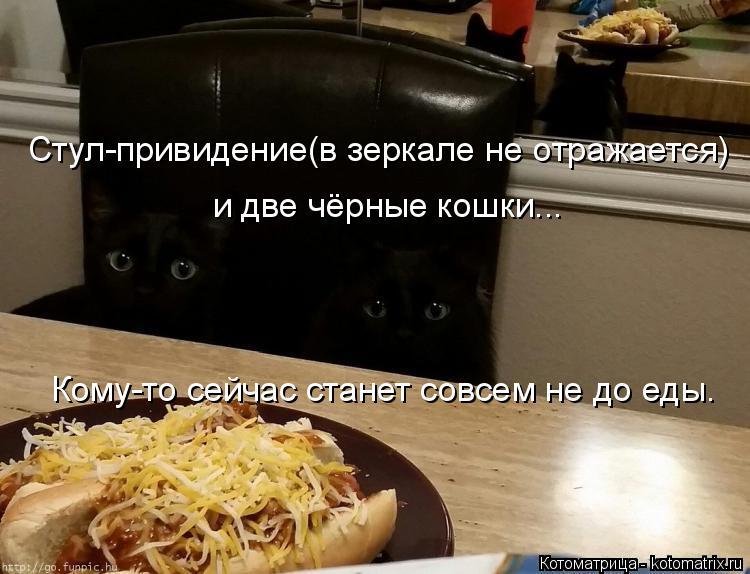 Котоматрица: Стул-привидение(в зеркале не отражается) и две чёрные кошки... Кому-то сейчас станет совсем не до еды.