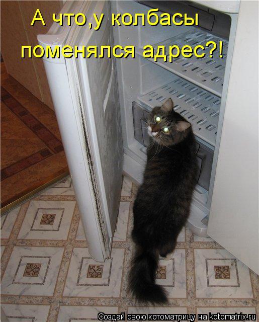 Котоматрица: А что,у колбасы  поменялся адрес?!