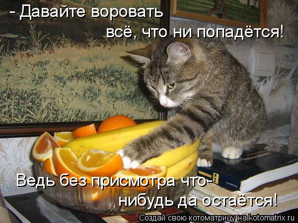 Котоматрица: - Давайте воровать всё, что ни попадётся! Ведь без присмотра что- нибудь да остаётся!
