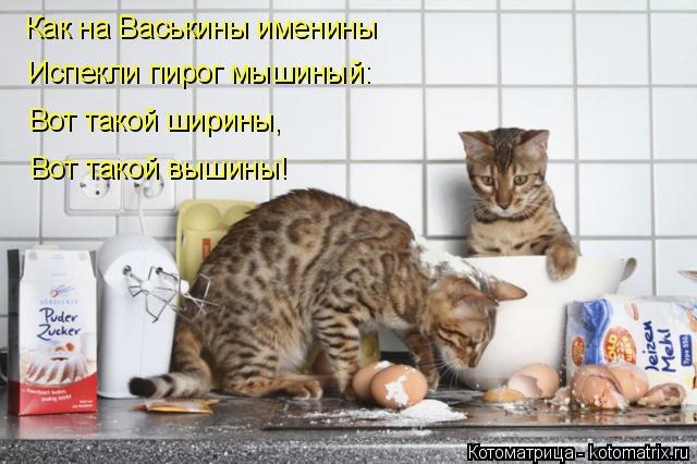 Котоматрица: Как на Васькины именины Испекли пирог мышиный: Вот такой ширины, Вот такой вышины!