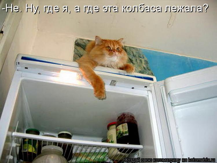 http://kotomatrix.ru/images/lolz/2014/09/08/kotomatritsa_yP.jpg