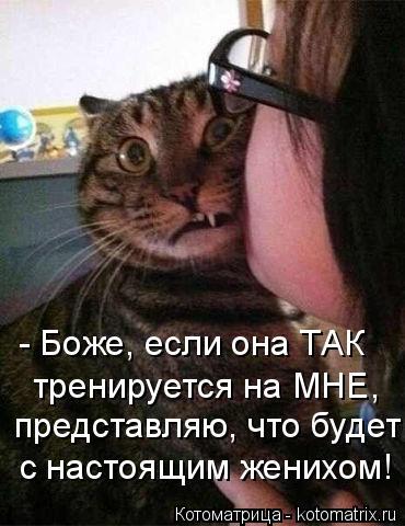 Котоматрица: - Боже, если она ТАК  тренируется на МНЕ, представляю, что будет с настоящим женихом!