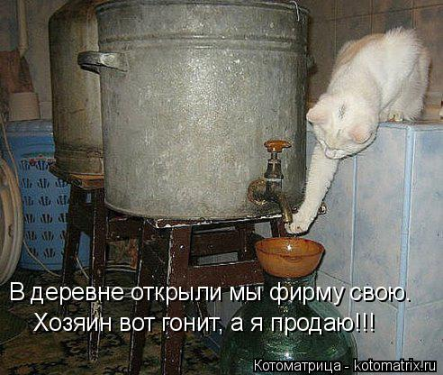 Котоматрица: В деревне открыли мы фирму свою. Хозяин вот гонит, а я продаю!!!