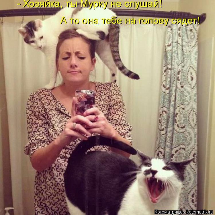 Котоматрица: А то она тебе на голову сядет! - Хозяйка, ты Мурку не слушай!