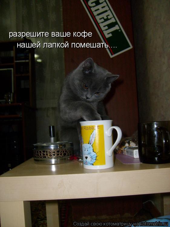 Котоматрица: разрешите ваше кофе  нашей лапкой помешать....