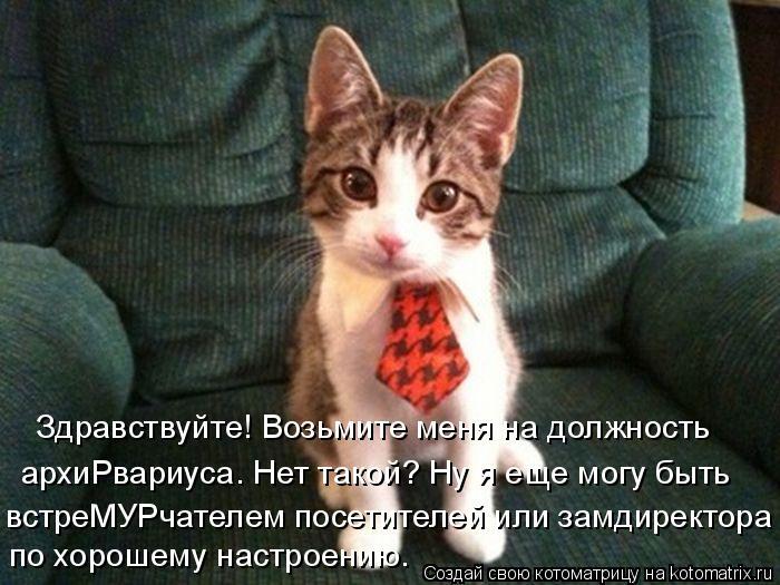 http://kotomatrix.ru/images/lolz/2014/09/10/kotomatritsa_BQ.jpg