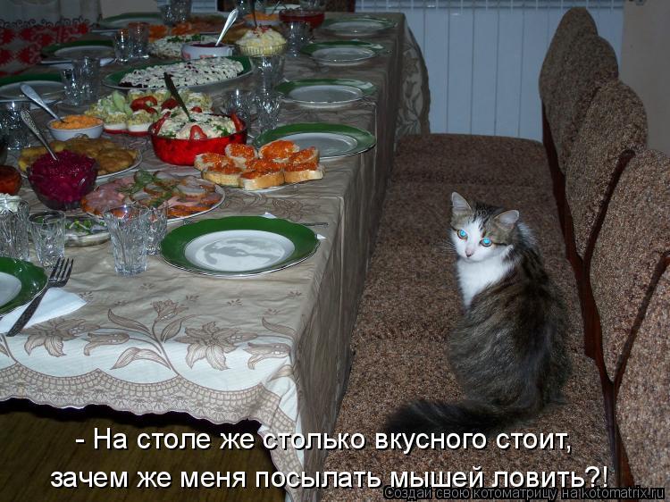 Котоматрица: - На столе же столько вкусного стоит,  зачем же меня посылать мышей ловить?!