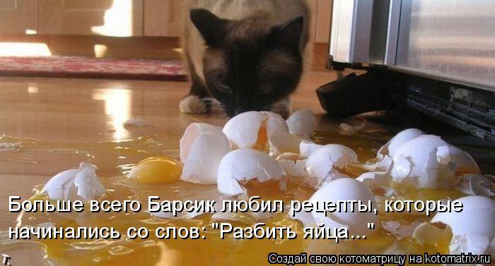 """Котоматрица: Больше всего Барсик любил рецепты, которые начинались со слов: """"Разбить яйца..."""""""