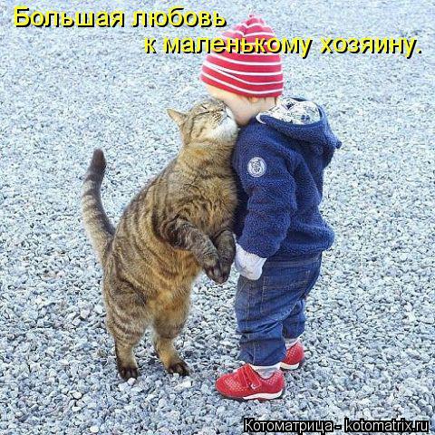 Котоматрица: Большая любовь  к маленькому хозяину.