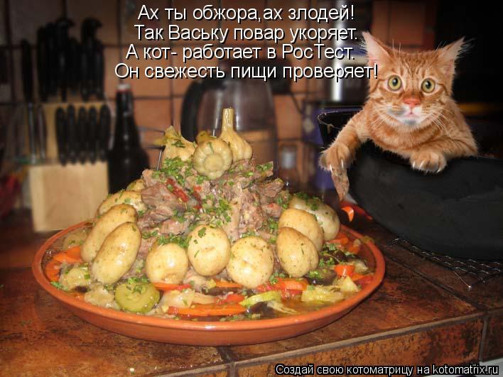 Котоматрица: Ах ты обжора,ах злодей! Так Ваську повар укоряет. Он свежесть пищи проверяет! А кот- работает в РосТест.